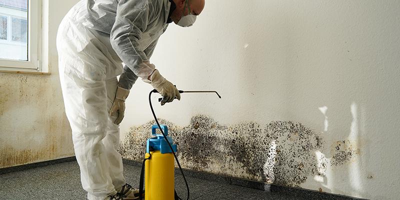 Mold Testing Norwalk