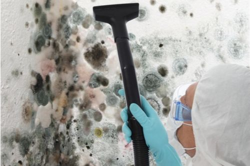 Mold Testing Irvine