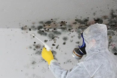 Mold Testing Huntington Beach